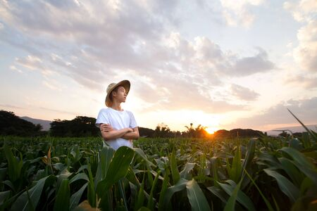 Young Asian farmer standing in the middle farm of corn with vision of businessman and Beautiful sunset sky on the background. Zdjęcie Seryjne