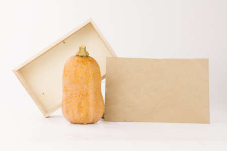 Pumpkin Butternut squash with wooden box and paper card, grow pumpkin and vegetable seed background concept.