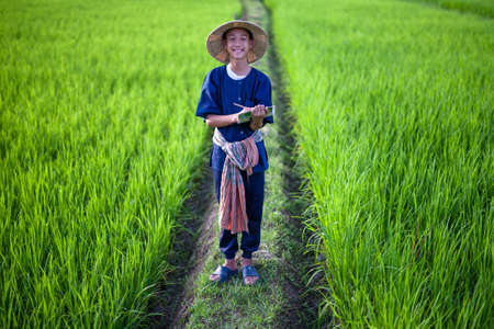 Young asian farmer with hat and tradition costume laughing at green rice fields metaphor hapiness and good lifestyle Zdjęcie Seryjne