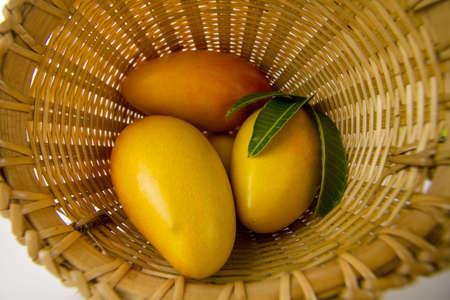 Ripe mango fruit in basket just harvest from organic farm. 스톡 콘텐츠