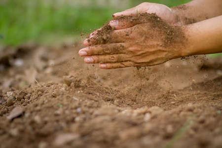 Farmer checking soil to prepare grow vegetable in the garden Zdjęcie Seryjne