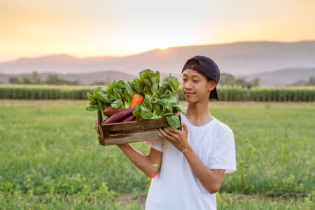 Young Asian farmer carrying a full wooden basket of various fresh vegetable at organic farm