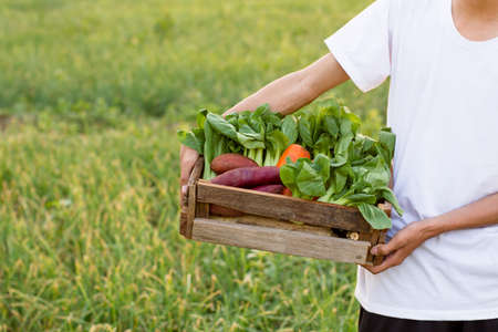 Full basket of fresh vegetables carrying by young Asian boy