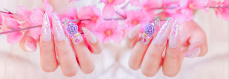 close up fashionista woman hand manicure with long acrylic extension stiletto style painting sweet ombre pink glitter decorated with beautiful light purple rose and sparkling rhinesotne 写真素材