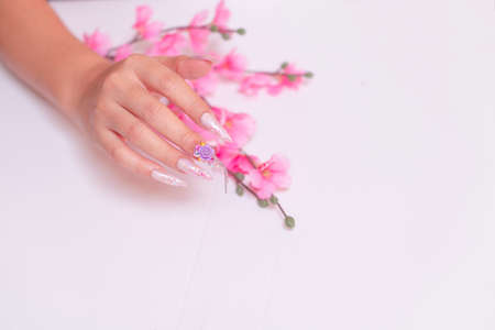 luxury woman hand manicure with long acrylic extension stiletto style painting sweet ombre pink glitter decorated with beautiful light purple rose and sparkling rhinesotne 写真素材