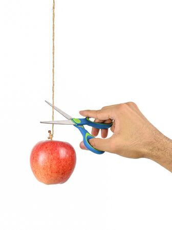 Hand hold the scissors try to cut rope that hang apple isolated on white background. Low hanging fruit concept.