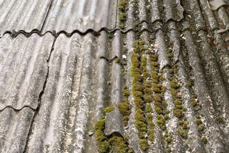 Moss and green algae on the roof tiles of a rural house. Archivio Fotografico