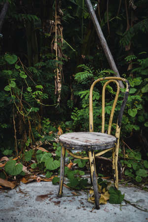 Vintage old wooden chair with peeling paint on rainforest natural background. Concept of loneliness and abandonment. Reklamní fotografie