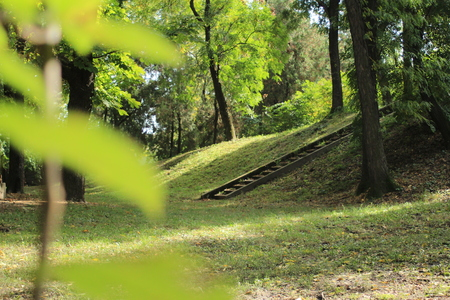 old stairs in nature Stock Photo