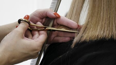 Close-up of Hairstylist Cutting Clients Hair In Salon Stock Photo