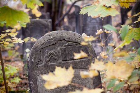 A old Jewish tombstones lost in green Stock Photo - 13560984