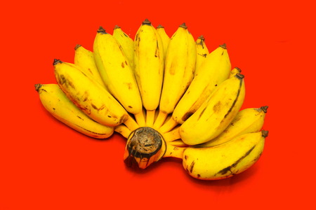bannana: Bunch of bananas Stock Photo