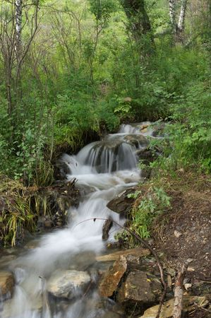 Fast mountain river in the forest. photo