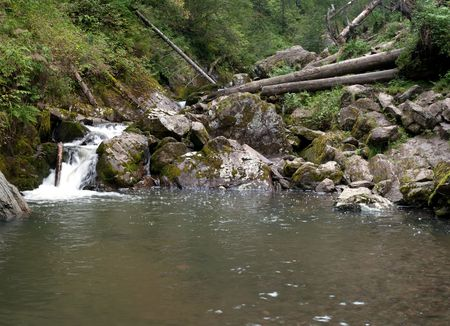 Landscape with rapid river and fallen tree photo