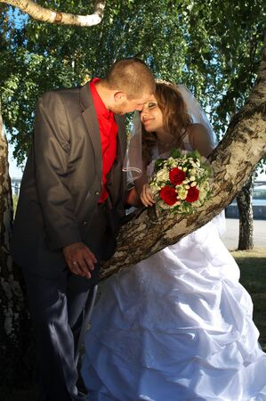 Romantic scene with Bride and groom near the birch tree photo