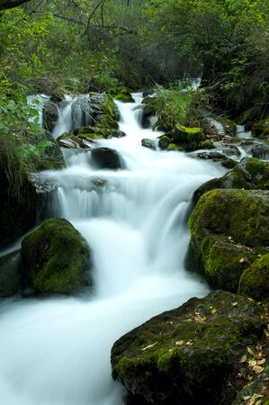 Summer forest with river and small cascades photo