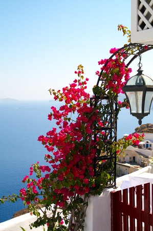 Sea view with traditional flowers near the greek house. Stock Photo