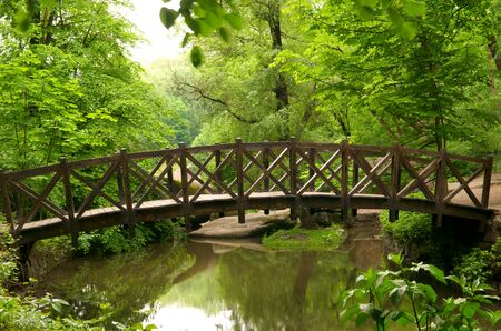 Beautiful wooden bridge in the summer park Stock Photo - 9807665