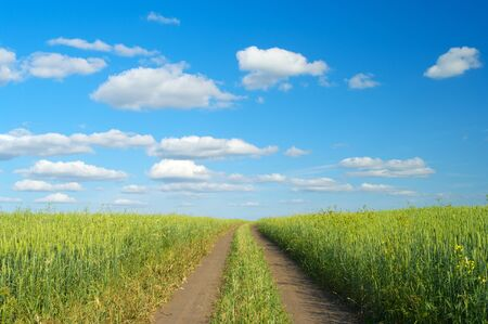 coutryside: Rural landscape with dirt road between green fields Stock Photo
