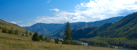 altay: Panoramic mountain landscape in a summer day, Altay, Russia