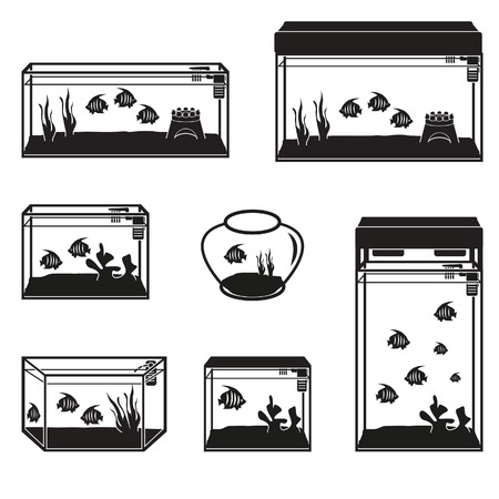 tank fish: Aquarium set