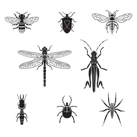 Set van insecten volume 3