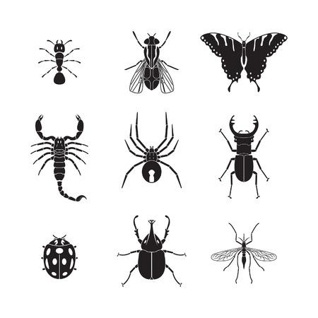 Conjunto de insectos volumen 1 Foto de archivo - 30016073