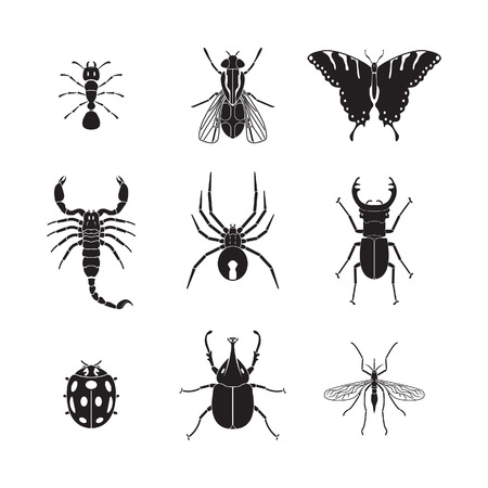 Set of insects volume 1 Иллюстрация