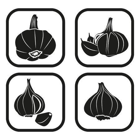 Garlic icon - four variations Vector