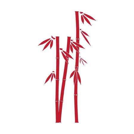 Bambus Standard-Bild - 30016277