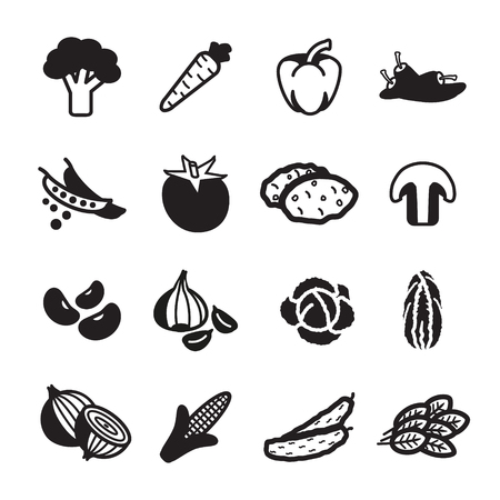 cabbage: Vegetables icon set. Vector eps 10. Illustration