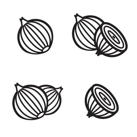 Zwiebel-Symbol in vier Variationen. Vektor-Illustration eps 10.