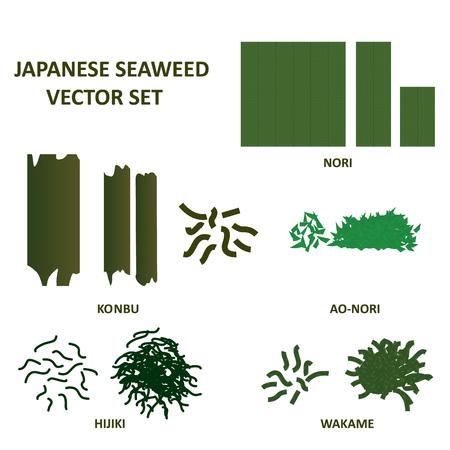 Seaweed vector set , nori, konbu and ao nori algae food. Vector.