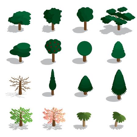 Isometric trees vector set. Isometric trees icon set.