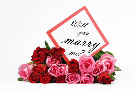 will you marry me: Roses and Valentine card with Will you marry me isolated on white Stock Photo