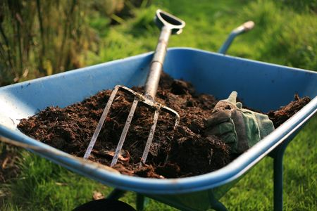 有機庭師の割当 写真素材
