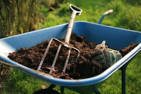 Organic Gardeners allotment
