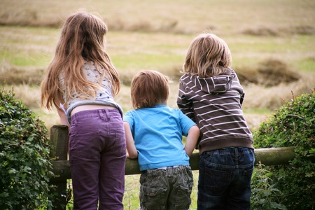 Children Watch Harvest in the countryside