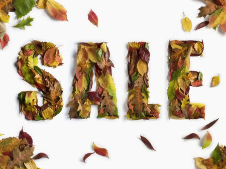 Sale word made from Autumn Leaves Stock Photo