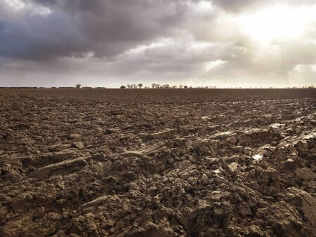the ploughed field: Freshly ploughed field in east anglia, Norfolk, UK Stock Photo