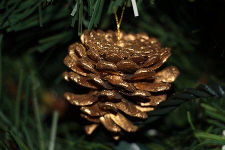 pine cone: Golden pine cone