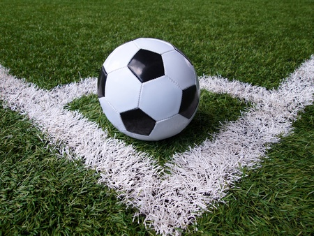 Soccer ball on green field      photo