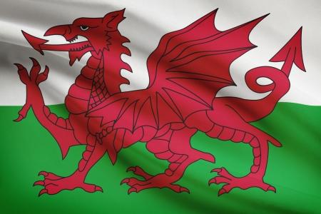 welsh flag: Bandiera gallese che soffia nel vento. Parte di una serie. Archivio Fotografico