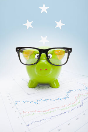 federated: Piggy bank with flag on background - Federated States of Micronesia Stock Photo