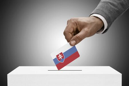 plebiscite: Ballot box painted into national flag colors - Slovakia