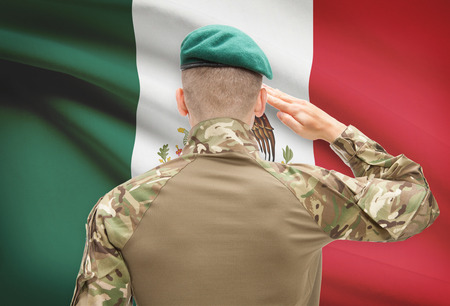 humanitarian aid: Soldier in hat facing national flag series - Mexico