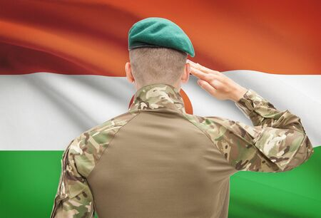 sovereignty: Soldier in hat facing national flag series - Niger Stock Photo