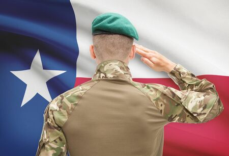 texas state flag: Soldier saluting to US state flag series - Texas