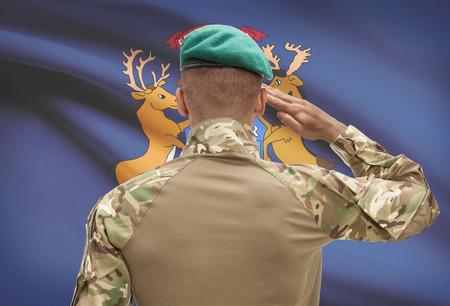 Dark-skinned soldier in hat facing US state flag series - Michigan