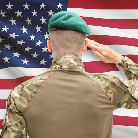 veterans day: Soldier in hat facing national flag series - United States